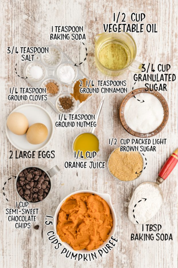 chocolate chip pumpkin bread raw ingredients that are labeled