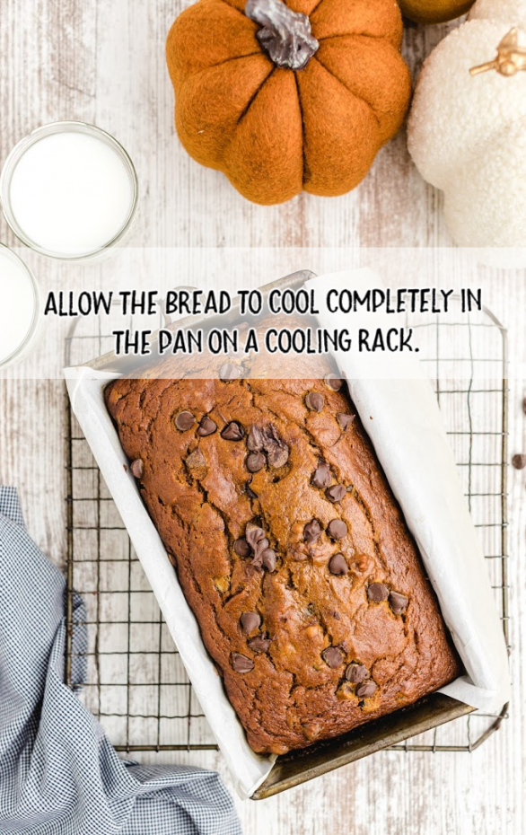 chocolate chip pumpkin bread in a pan on a cooling rack with pumpkins in the background