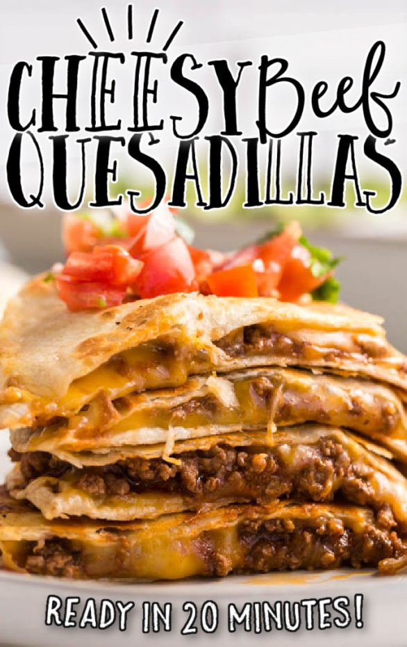A close up of food, with Beef and Quesadilla