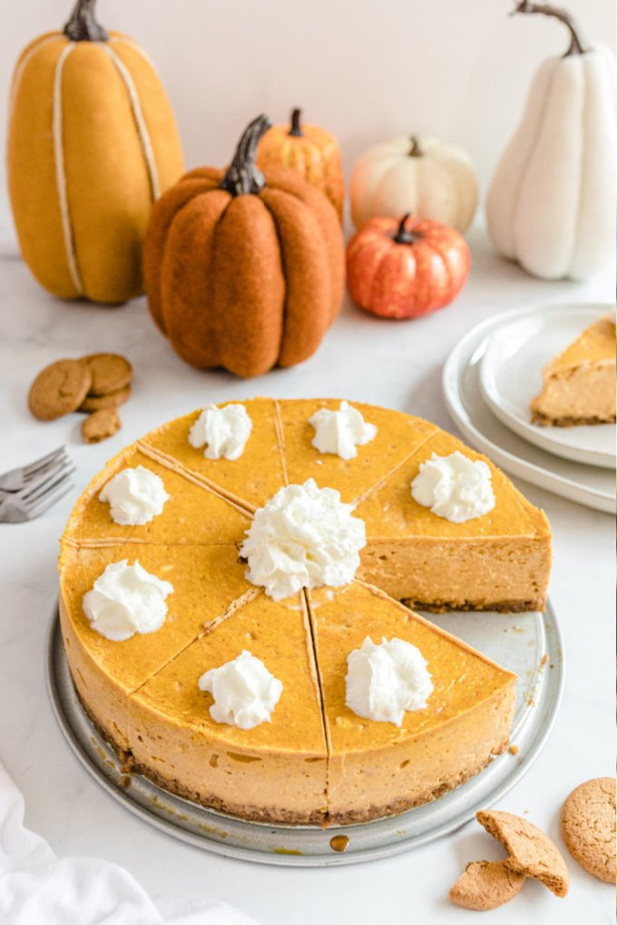 pumpkin cheesecake with gingersnap crust with whipped cream on the top on a tray with pumpkins in the background