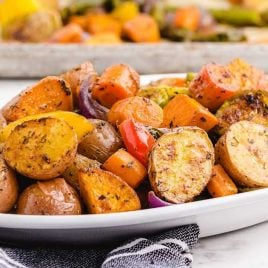 close up shot of a plate of Roasted Vegetables