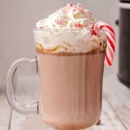 close up shot of a glass of Crockpot Peppermint Hot Chocolate topped with whipped cream and candy cane bits served with a candy cane