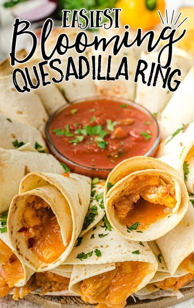 close up shot of blooming quesadilla ring arranged on a dish with dipping sauce in the middle
