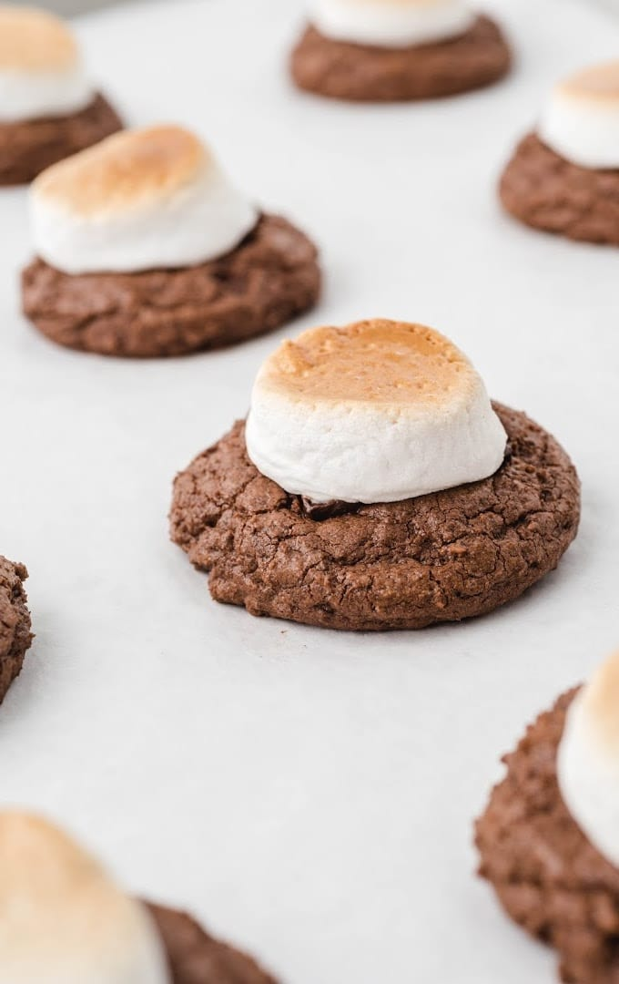 close up shot of hot chocolate cookies lined