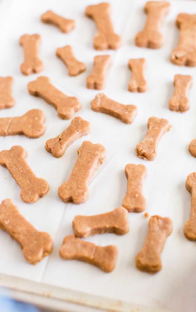 homemade dog treats lined on a baking tray