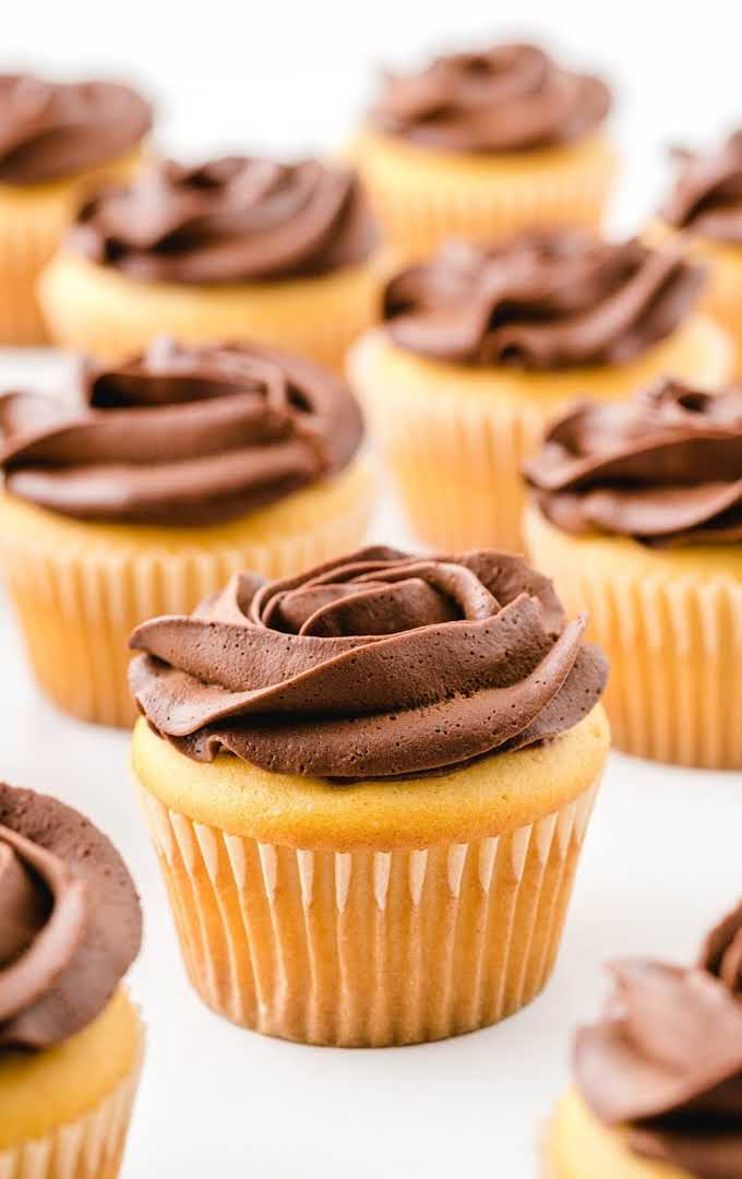 close up shot of boston cream cupcakes with chocolate frosting