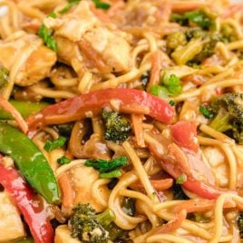 close up shot of a plate of Chicken Lo Mein