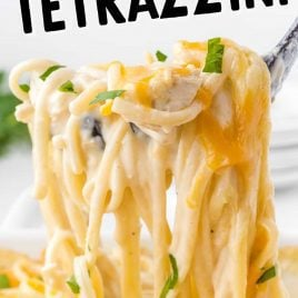 close up shot of Chicken Tetrazzini garnished with parsley on a fork