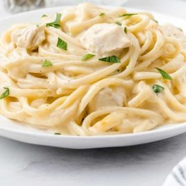close up shot of a plate of Chicken Tetrazzini garnished with parsley