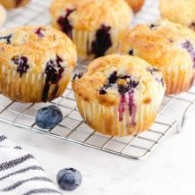 close up shot of blueberry muffins with sour cream on a cooling rack