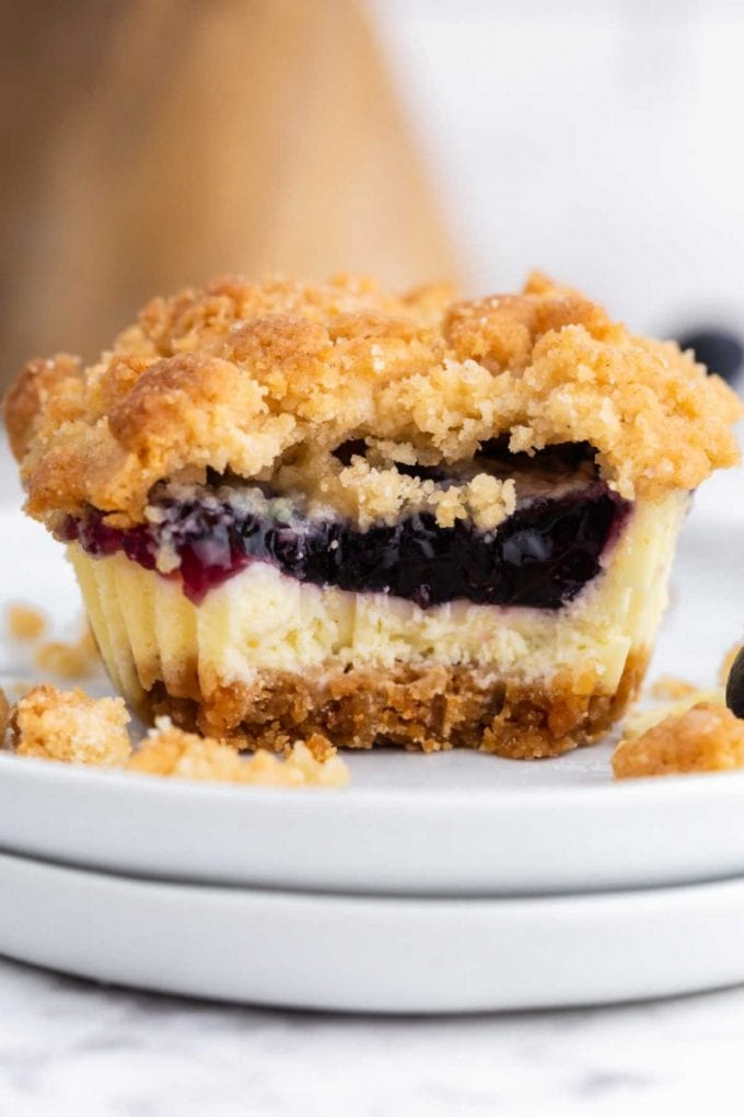 close up shot of mini blueberry cheesecake showing its inside layers on a plate