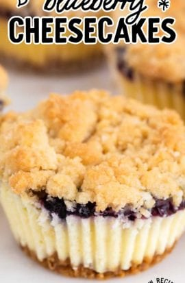 close up shot of mini blueberry cheesecake
