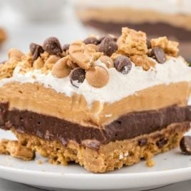 corner shot of a slice of a peanut butter dream bar on a white plate