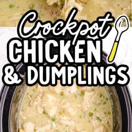 close up of chicken and dumplings on a wooden spoon and another photo below of an overhead shot of chicken and dumplings in a crockpot