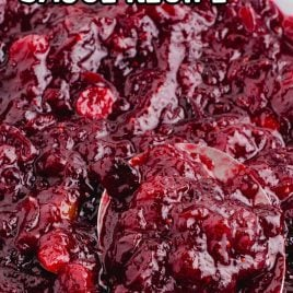 close up shot of a bowl of Cranberry Sauce with a spoon